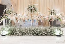 Haris Vertu 2019 11 10 by White Pearl Decoration