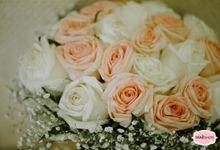 Rj and Jess - Dubai Civil Wedding by WINKSHOTS - Wedding and Events Photographer