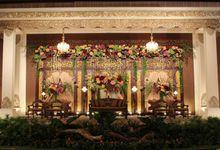 Birawa - Ivana & Christmas Wedding Reception by Jova Musique