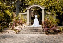 Silver Wedding Anniversary by Astrud