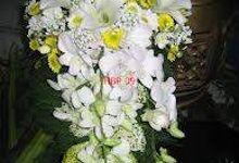 Arttya Florist by Arttya Florist