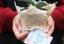 Wedding Emma & Titto - Souvenir Sukulen Buket Goni by Greenbelle Souvenir