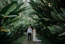 Maddie   & Tom  at Villa Infinity by Evermotion Photography by Evermotion Photography