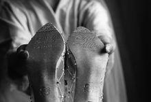 @dradeline | #SachlireneAster 5cm by SACHLIRENE TFOTA