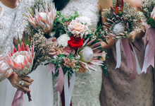 Protea Bloom  by Everything With Crates