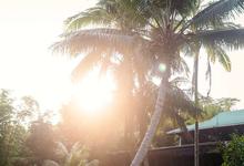 Rush & Anna's Hawaiian Paradise Wedding  by Explore in Love Adventure Wedding Photography