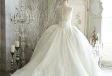 Wedding Gown Collection by Faye Wedding