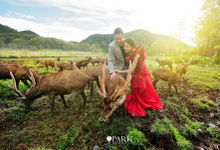 Dinal & Fany spread their love from nature by Park Enterprise