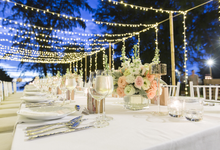 Amazing outdoor wedding setup by Merit Events