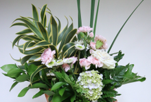 Bloombox and flower arrangement by doux