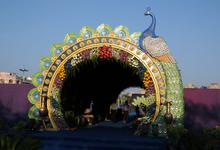 Peacock Theme by Wander Weddings