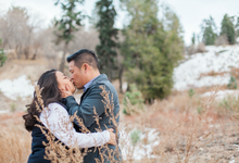 Engagements and Weddings  by Manya Photography