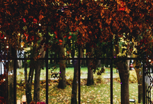 Autumn wedding V&A by WeDoAgency