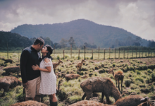 Yossep & Siska prewedding by Ace of Creative