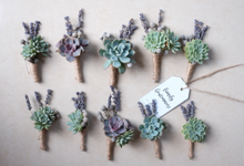 Rustic Succulent Boutonniere by Floral Theory