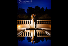 My Work by Stuart Wood Exclusive Wedding Photography