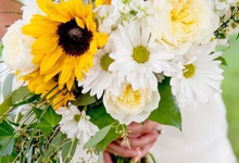 Sunshine on a Stem by Schmidt's Flowers & Accessories