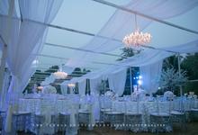 Outdoor wedding dinner by blue velvet marquee