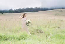 la ended farm by jeannemarie photography
