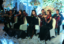 18.09.16 ORANGE Light Orchestra by ORANGE Music Management