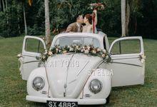 SINGAPORE WEDDING PHOTO KAI YONG & STELLA by StayBright