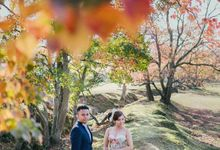 Japan Prewedding by StayBright