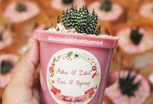 Sukulen Pot Warna by My Garden Gift