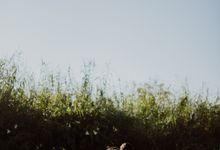 ERWIN & NOVIRA by Jivo Huseri Film