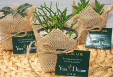 Wedding Of Yura & Donne - Sukulen Buket Goni by Greenbelle Souvenir