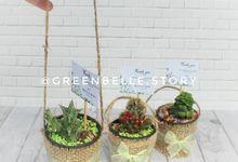 Wedding Maul & Reza - Sukulen Goni Pita 6cm by Greenbelle Souvenir