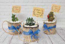 Wedding Adinda & Dimas - Sukulen Goni Pita 6cm by Greenbelle Souvenir
