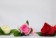 Boutonniere / corsage by Hatiku Florist