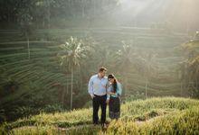 rice terrace bali by Maxtu Photography