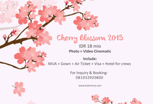 Japan Cherry Blossom (Open Trip 2019) by Huemince