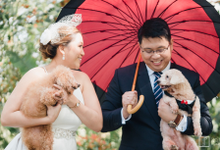 Morning Tagaytay Wedding - Ace & Charm 02.16.2019 by Icona Elements Inc. ( an Events Company, Wedding Planning & Photography )