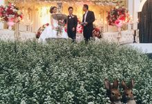 The  Wedding of Daniel and Lanny by CDC Corp