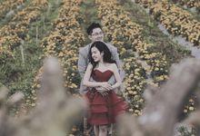 Pre-wedding photos by V E R A H A I L I E