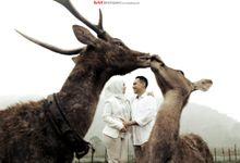 Prewedding Of Zya & Reza by By Ants Photography & Wedding Planner