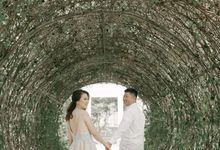 D & A Prewed Album by Fratello Photography