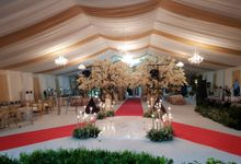 Tent Decoration Outdoors by MT PRODUCTION