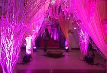 All Are Wedding Ceremony Project by New Jugnu Decorators