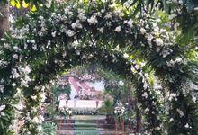 Dekorasi Akad & Resepsi by Alfida Wedding