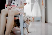 Actual Day Wedding - Ray & Angelyn by Jie Xen Photography