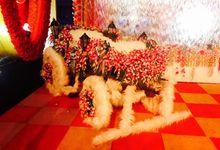 Bride entry by RJ Sound House