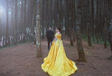 Ronald & Indi LIPUTAN HARI H CINEMATIC FOTO & VIDEO & PHOTOBOOTH OLEH VIDEOMEGAVISION by videomegavision