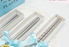 Elegant Stainless Chopstick include Clear Box by Fine Souvenir