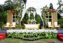wedding paket hemat mulai 26 juta-an wedding konsep nasional modern outdoor by azza wedding