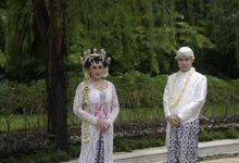 Wedding Of Debby & Satrio - Sukulen Teracotta by Greenbelle Souvenir