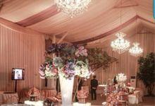 Otiga by Otiga Tent Decoration