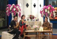 Net Tv Show by Alleka Design